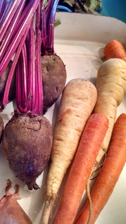 Oct kit - root veg