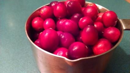 cranberries plain