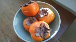 IMK Feb persimmons