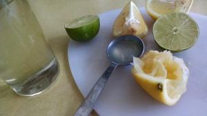Lemon Lime Cocktail 1