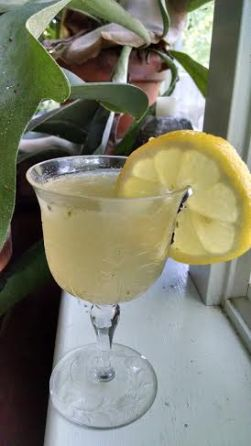 Lemon cocktail Charleston