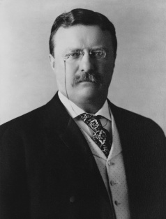 theodore_roosevelt_1904-library-of-congress