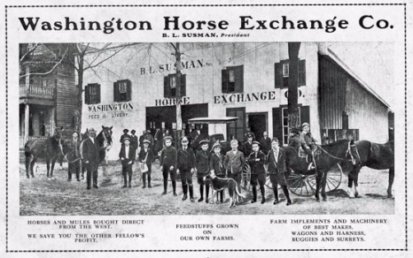 Susman Horse Exchange